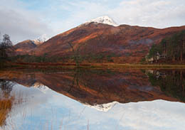 Reflections in Affric