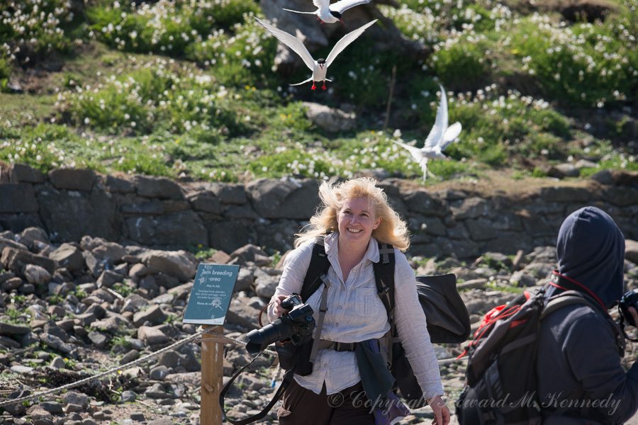 Karen running the Arctic Tern gauntlet