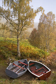 Rowing Boats in Glen Affric